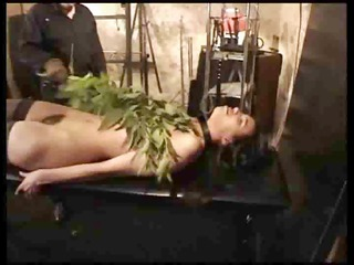 hairy girl punished with nettles